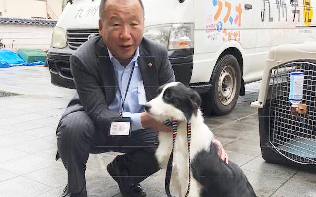 殺処分撲滅運動・動物愛護推進運動の看板犬